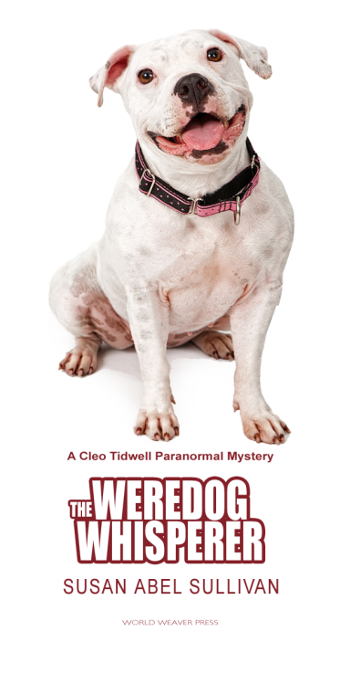 Luna the pit bull, star of THE WEREDOG WHISPERER by Susan Abel Sullivan